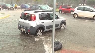 Mulher fica ferida após ser atingida por árvore no Centro de Belo Horizonte - O acidente foi durante a forte chuva que atingiu a cidade.