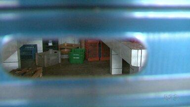 Reaproveitamento de alimentos fica prejudicado depois do Provopar fechar box na Ceasa - O Banco de Alimentos está fechado desde o dia 26 de outubro.