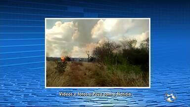 Incêndio de grandes proporções atinge mata em Ingazeira - Cerca de 150 pessoas fizeram uma força tarefa para controlar as chamas