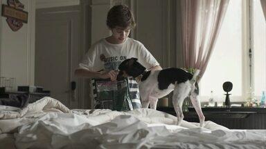 Sherlock vai parar no quarto de Pedrinho - Gabriel deixa o cachorro escapar e o animal se esconde no carrinho de Nelito sem que ninguém veja