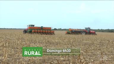 Veja os destaques do Mirante Rural - Programa voltado para as notícias do campo é exibido todo domingo pela TV Mirante.