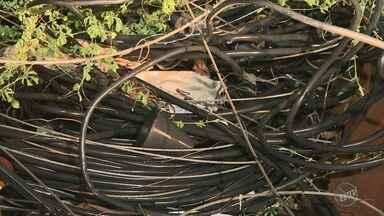 Guarda Municipal de Cosmópolis encontra 500 mil quilos de cabos de telefonia roubados - Material estava em um ferro velho da cidade. A GM encontrou durante um patrulhamento com o drone que sobrevoava a região.