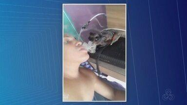 Homem suspeito de fumar maconha com macaco é detido em Manaus - Suspeito, que estaria fumando maconha, assinou TCO e deve responder em liberdade.