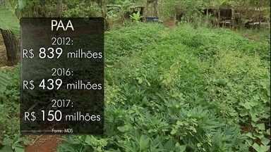 Agricultores sofrem com a diminuição do Programa de Aquisição de Alimentos - O Governo Federal tem reduzido as verbas do PAA ano a ano. Tem agricultor familiar que já perdeu a produção por falta de comprador.