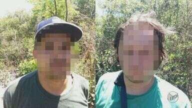 Polícia descobre plantação de maconha em mata e prende dois em São Carlos, SP - Plantio foi encontrado após denúncia. No local, de difícil acesso, havia 180 pés da droga.