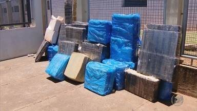 Homem é preso com duas toneladas de maconha em Serra do Salitre (MG) - Homem é preso com duas toneladas de maconha em Serra do Salitre (MG)