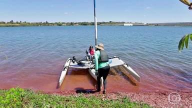 Distrito Cultural - Águas do Cerrado, 04/11/2017 - Passeio no Lago Paranoá tem parada para retirar lixo. Em Ceilândia, uma nascente com águas cristalinas.
