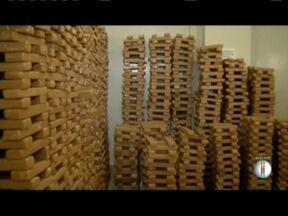 Em 2017, cerca de três toneladas de maconha foram apreendidas - !4% maior que o mesmo período do ano passado.