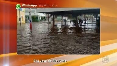Miniterminal fica alagado após pancada de chuva em Rio Preto - O miniterminal de São José do Rio Preto (SP), localizado entre a rua Pedro Amaral e a avenida Bady Bassitt, foi tomado pela água após uma pancada de chuva que atingiu a cidade no final da tarde desta segunda-feira (20). A TV TEM recebeu imagens de um motorista e um motociclista se arriscando ao atravessar a água. O Corpo de Bombeiros não atendeu nenhuma ocorrência por causa da chuva.