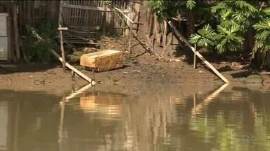 Erosão nas margens dos rios prejudica quem depende do Cricaré, no Norte do ES - Reportagem é parte de série especial sobre o rio.