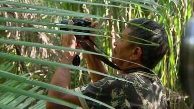 Para preservar fauna nordestina, caçadores trocam armas por câmeras - Os bichos estão ganhando uma legião de admiradores numa região onde a caça predominava. Iniciativa vai dar prêmio para a melhor foto.