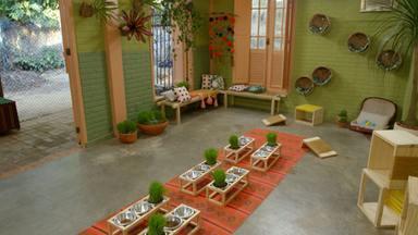 Cabana Pica-Pau - Renovando A Sala Dos Gatinhos