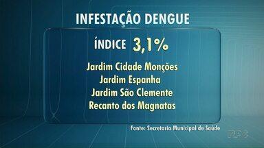 Maringá tem 175 casos confirmados de dengue - Veja quais são os bairros com o maior índice de infestação de larvas do mosquito