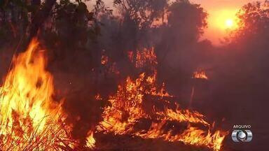 Número de queimadas em 2017 é o segundo maior da série histórica no Tocantins - Número de queimadas em 2017 é o segundo maior da série histórica no Tocantins