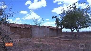 Falta de água e de alimento causa redução de rebanho em propriedades em PE - Parte do rebanho desapareceu no estado em consequência da seca que já dura seis anos.