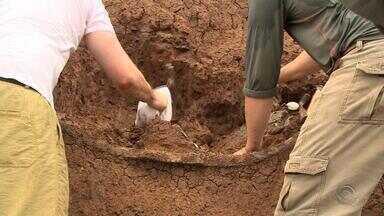 Fóssil de 'tatu gigante' é encontrado na Fronteira Oeste do Rio Grande do Sul - Assista ao vídeo.