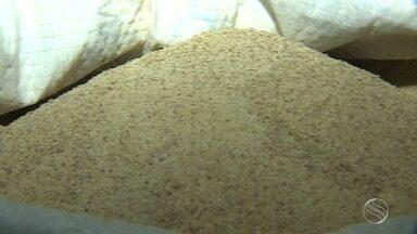 Grupo de produtores está fazendo farinha de batata doce - Grupo de produtores está fazendo farinha de batata doce.