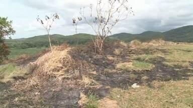 Fogo em mata assusta moradores de Jacupiranga - Chamas chegaram próximo de casas.