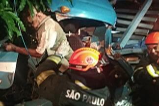 Motorista morre em acidente em Ferraz de Vasconcelos - Homem dirigia caminhão e bateu em árvore.
