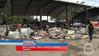 Número de empresas ligadas ao mercado do lixo aumentou 50% em cinco anos em Taubaté - Tem gente que viu no lixo uma chance de superar a crise.