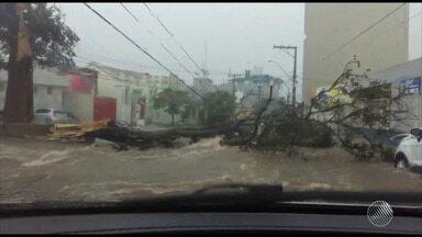 Quase 100 milímetros de chuva: temporal provoca estragos em Conquista e Licínio de Almeida - Veja no quadro da previsão do tempo.