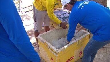 Vigilância Sanitária do Recife fiscaliza alimentos vendidos nas praias - Ação ocorrerá até o início de março, em Boa Viagem, Pina e Brasília Teimosa