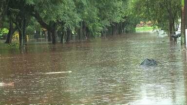 Chuva causa estragos em Londrina neste sábado (6) - Casas ficaram alagas e árvores caíram.