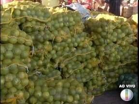 Confira os preços das frutas e verduras na Ceanorte - Saiba quais são as frutas da estação.