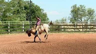 Cavalos para rodeio são tratados como atletas - Para muitos peões, cavalo bom é cavalo bravo, animais sem uma raça definida e que estão prontos para desafiar quem tem coragem.