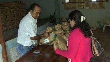 Distribuição de sementes inicia em Aracati. - Confira mais notícias em G1.globo.com/ce