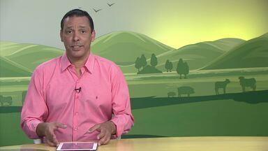 Retrospectiva 2017: confira os assuntos que foram destaques no ano - parte 5 - O MG Rural exibe novamente as principais reportagens que foram ao ar no ano passado