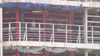 Nova decisão da Justiça impede partida do navio com mais de 25 mil bois do Porto de Santos - O navio está detido há três dias.