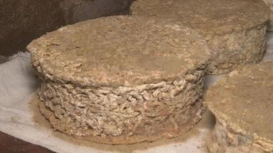 Pesquisadores visitam Caeté (MG) para analisar queijo maturado produzido na região - Pesquisadores visitam Caeté (MG) para analisar queijo maturado produzido na região