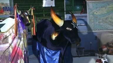 Bois Caprichoso e Garantido são homenageados no carnaval em São Luís - Bloco Os Foliões este ano vai levar para a avenida uma das maiores festas da região Amazônica.