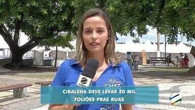 Bloco Cibalena deve reunir cerca de 15 mil foliões em Corumbá - Homens se vestem de mulher e mulheres se vestem de homem nessa festa.