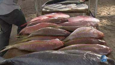 JM vai à feira: confira o preço dos pescados da Semana Santa - JM vai à feira para mostrar as novidades; confira.