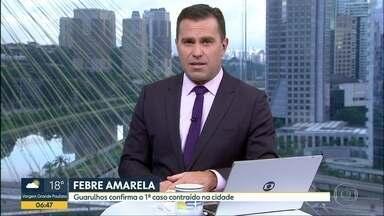 Guarulhos registra 1º caso de febre amarela contraído na própria cidade - Vítima é uma mulher de 20 anos. Ela foi hospitalizada, mas já está em casa