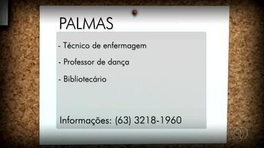 Está em busca de emprego? Confira as vagas em Palmas, Porto Nacional e Gurupi - Está em busca de emprego? Confira as vagas em Palmas, Porto Nacional e Gurupi
