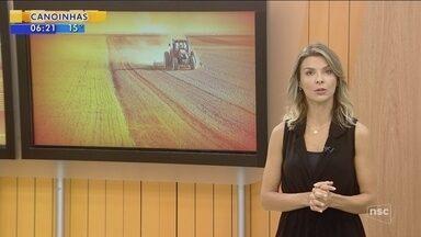 Evento de agronegócio 'Dia de Campo' ocorre em Campos Novos - Evento de agronegócio 'Dia de Campo' ocorre em Campos Novos