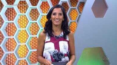 Globo Esporte RS - Bloco 3 - 28/02 - Assista ao vídeo.