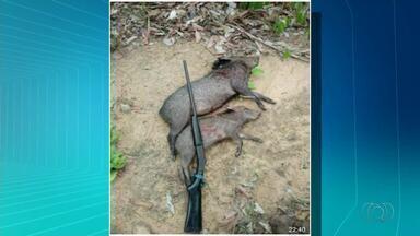 Polícia Federal faz operação contra caça e pesca ilegais em Palmas - Polícia Federal faz operação contra caça e pesca ilegais em Palmas