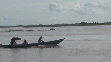 Subida do Rio Solimões prejudica navegação em Manacapuru, no AM - Agricultores da várzea estão otimistas.