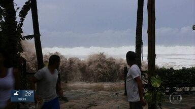 Fenômeno chamado swell provoca ondas gigantes em Fernando de Noronha - Na Praia da Conceição, uma onda quebrou tão forte que derrubou uma árvore.