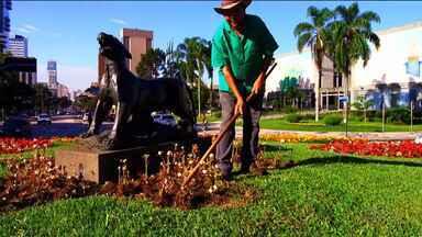 Um olhar carinhoso que ganhou as redes sociais, conheça a história de Aquiles - Fotógrafo flagra trabalho de jardineiro e a foto ganha repercussão.