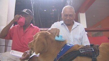 """Terapia com cães ajuda no tratamento de idosos em abrigo de Macapá - Projeto social """"Patas do Bem"""" usa ação para promover bem estar e qualidade de vida aos pacientes. Visita de animais ao abrigo São José ocorreu neste sábado (3)."""