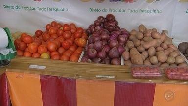 Baixo preço aumenta venda e consumo de legumes em cidades da região de Itapetininga - Os preços de alguns legumes nos primeiros meses do ano ficaram mais baratos, segundo levantamento feito pelas centrais de abastecimento. O resultado disso é que o consumidor está conseguindo comprar os produtos em mais quantidade.