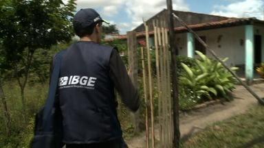 Dados do censo agropecuário serão divulgados em julho - 600 recenseadores do IBGE caíram em campo para fazer a coleta de dados.