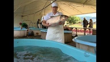 Feira do Peixe Vivo começa na Gare de Santa Maria - Veja como estão os preços dos peixes este ano.