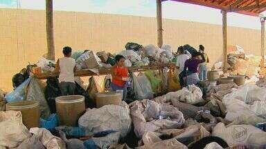Cooperativa de reciclagem de Rio Claro tem condições precárias de trabalho - Espaço cedido pela prefeitura não tem estrutura para atender os catadores.
