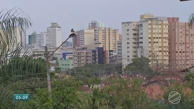 Comerciantes de MS tentam não repassar para clientes reajuste da tarifa de energia - Reajuste da energia elétrica começou a valer domingo (8), na maioria das cidades de Mato Grosso do Sul.